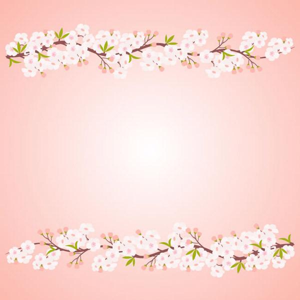 白色桃花枝背景