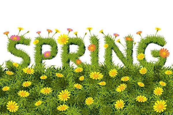 关于立春的花的手绘