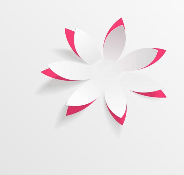 白色纸花朵矢量