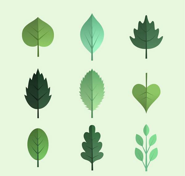 0 点 关键词: 绿色树叶设计矢量素材下载,植物,树叶,叶子,杨树叶