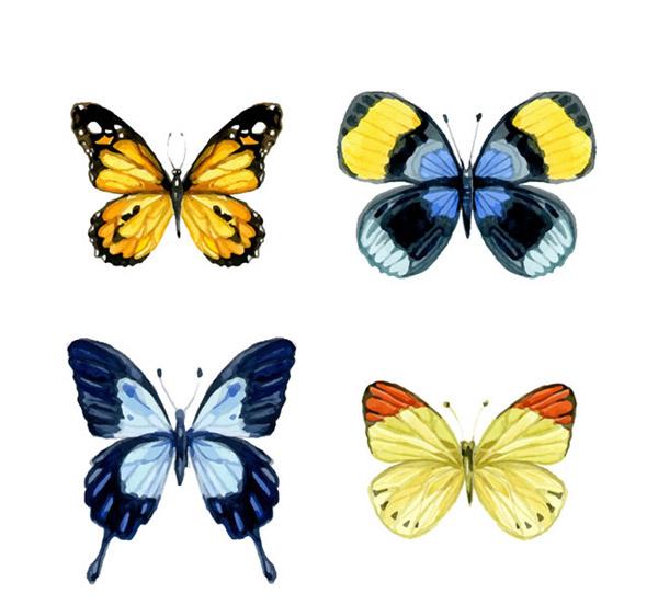0 点 关键词: 水彩蝴蝶设计矢量素材下载,昆虫,蝴蝶,水彩,矢量图,ai