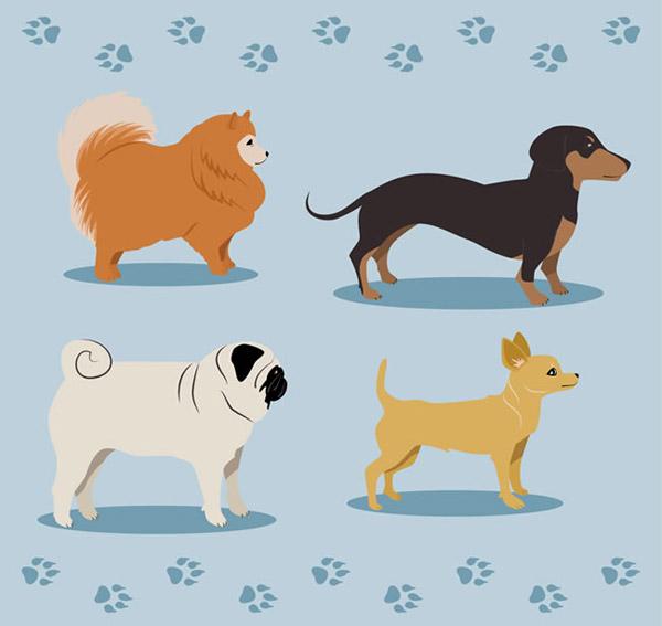 素材分类: 矢量家禽家畜所需点数: 0 点 关键词: 可爱宠物狗侧面矢量