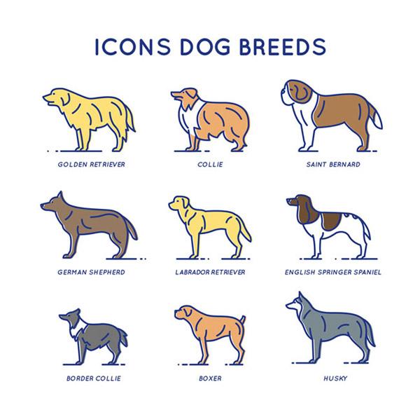 英国史宾格犬,博德牧羊犬,拳师狗,哈士奇,狗,宠物,动物,图标,矢量图