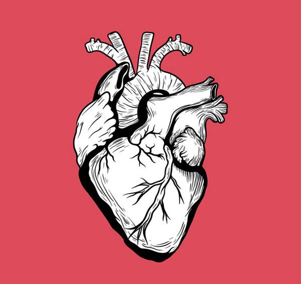 手绘心脏设计
