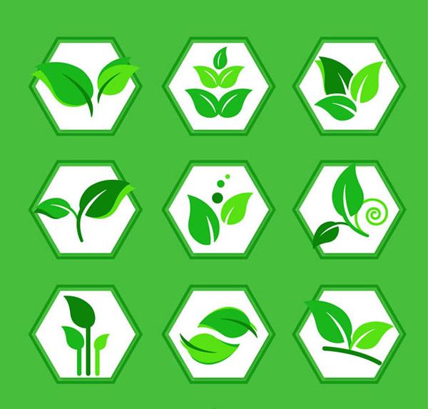 创意绿叶图标矢量素材下载,植物,绿叶,树叶,叶子,六边形,图标,矢量图