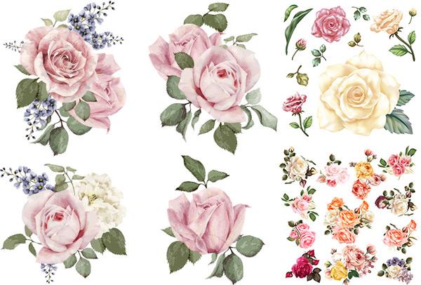 手绘花朵矢量