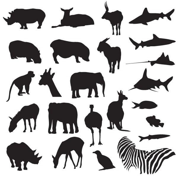 关键词: 陆地海洋动物黑白剪影矢量素材下载,矢量动物,剪影,黑白,犀牛