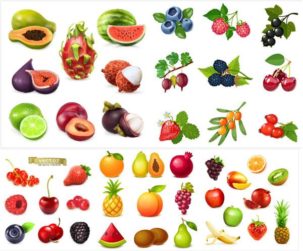 水果设计矢量_素材中国sccnn.com