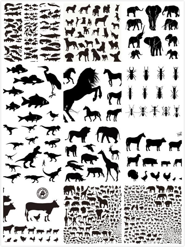 长颈鹿,猴子,飞鸟,海洋生物