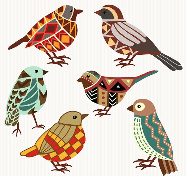 鸟类,小鸟,花纹