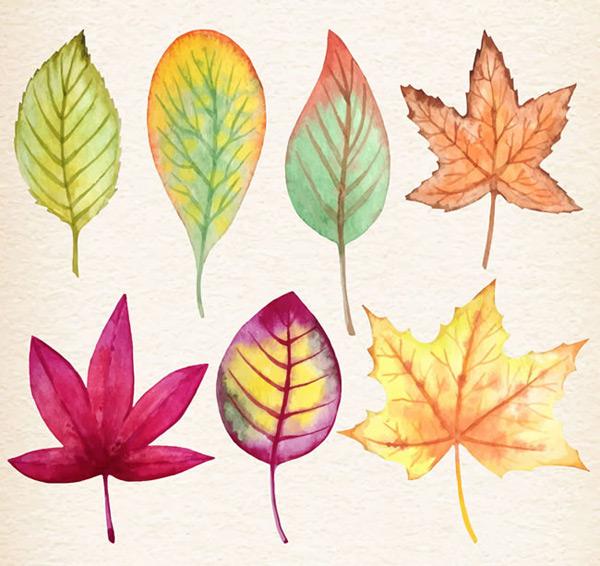 水彩秋天落叶树叶矢量素材下载