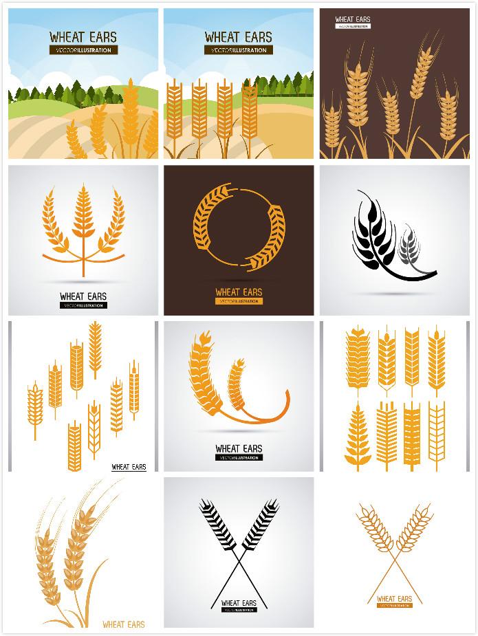 关键词: 精美麦穗图案设计矢量素材,金色麦子,粮食,精美图案,按钮图标图片