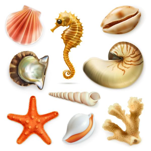 海洋生物矢量图