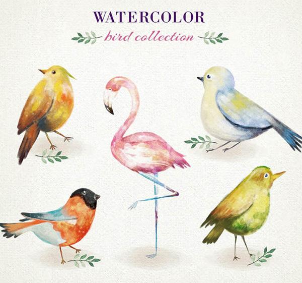 素材分类: 矢量野生动物所需点数: 0 点 关键词: 水彩绘鸟类设计矢量