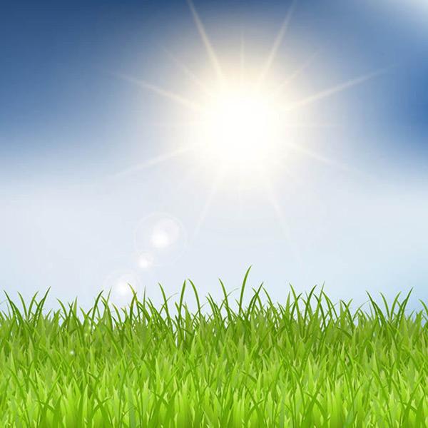 0 点 关键词: 阳光下的草地矢量图下载,太阳,风景,草地,阳光,矢量图