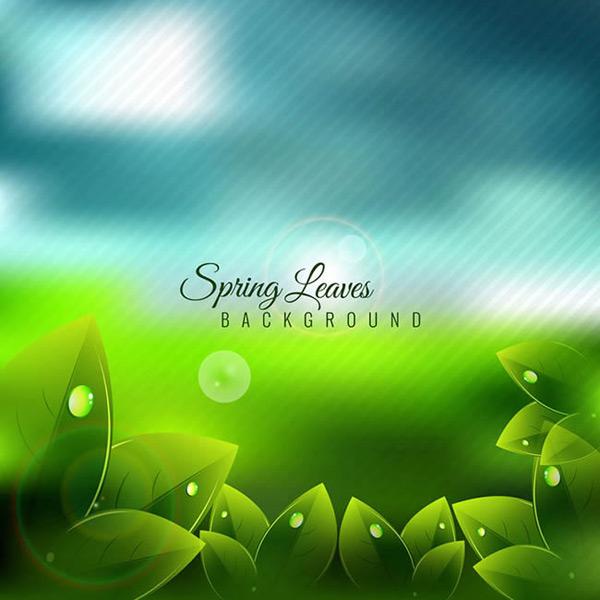 关键词: 春季带露珠的绿叶矢量图下载,云朵,光晕,植物,春季,露珠,树叶