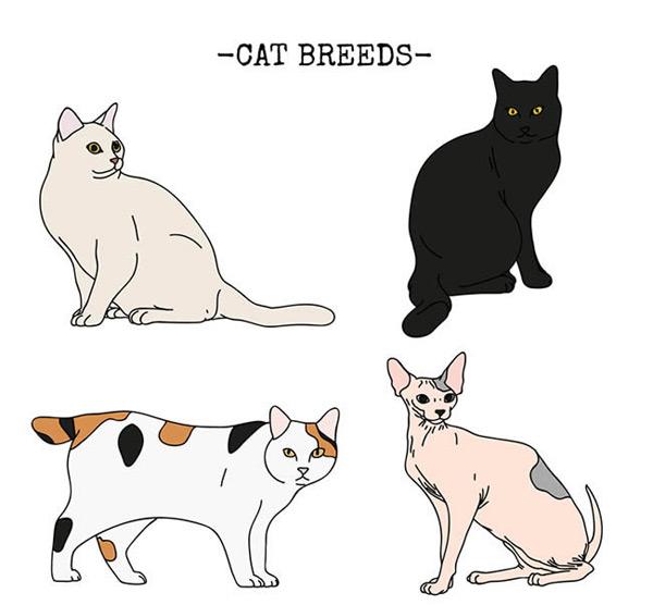 0 点 关键词: 可爱彩绘猫咪设计矢量图下载,宠物,彩绘,猫,动物,矢量
