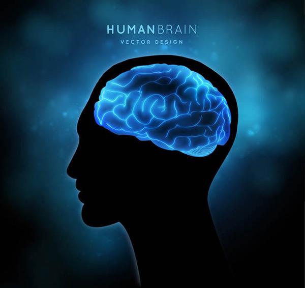 大脑男子头像剪影