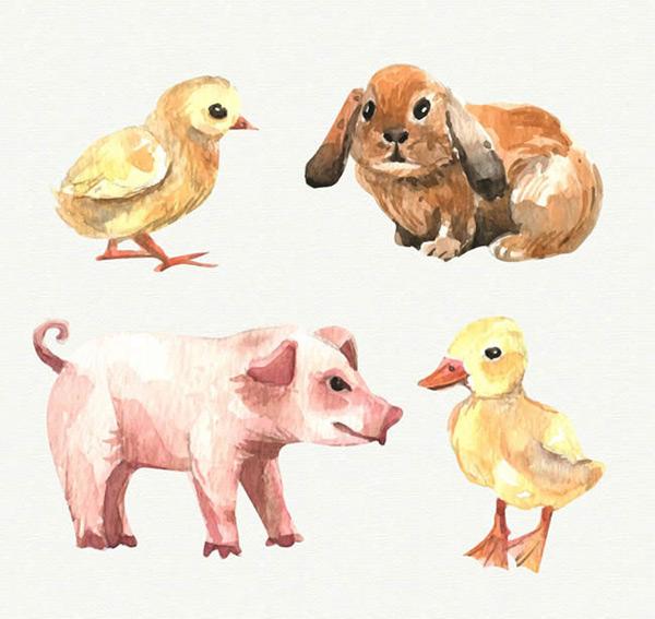 彩绘农场动物