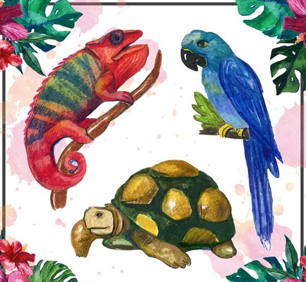 水彩绘热带动物矢量素材