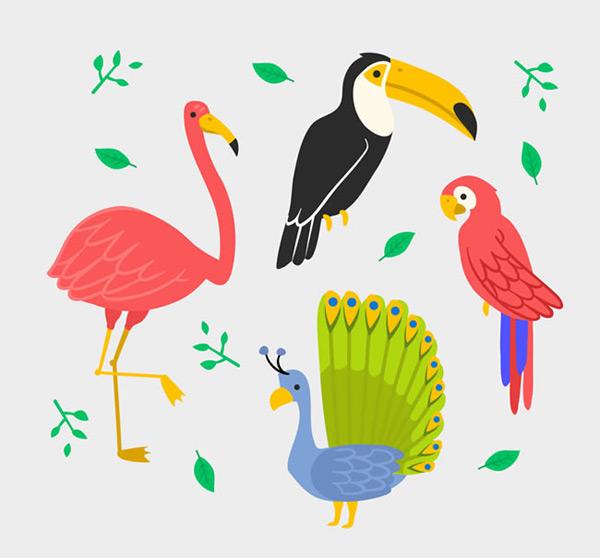 树叶 鹦鹉 卡通图片