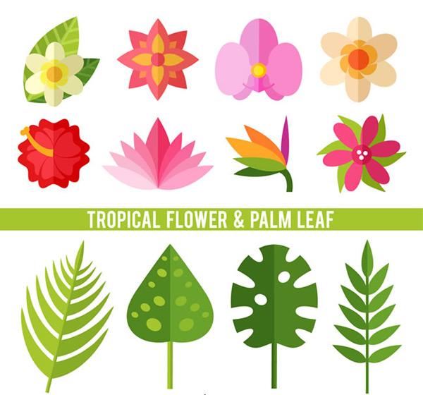 素材分类: 矢量花草树木所需点数: 0 点 关键词: 热带植物花卉和棕榈