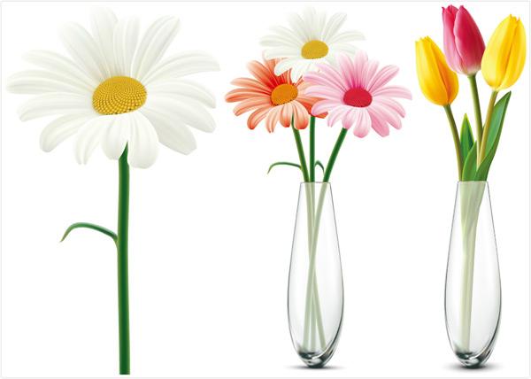 黄色郁金香,红色郁金香,插画,花艺,花朵,装饰花朵,花卉植物,矢量素材