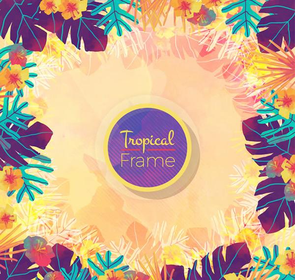 热带彩色花卉边框