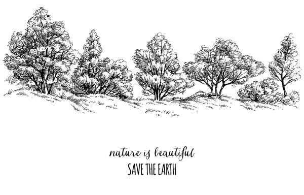 素描,手绘,插画,风景,黑白植物,速写,植物,树木,山坡,大树,风景,矢量