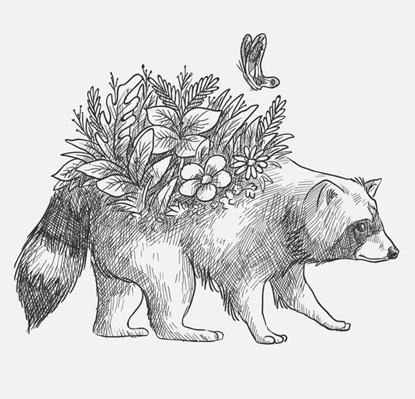 素材分类: 矢量野生动物所需点数: 0 点 关键词: 手绘背上开花的浣熊