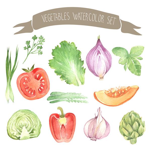 手绘水彩蔬菜