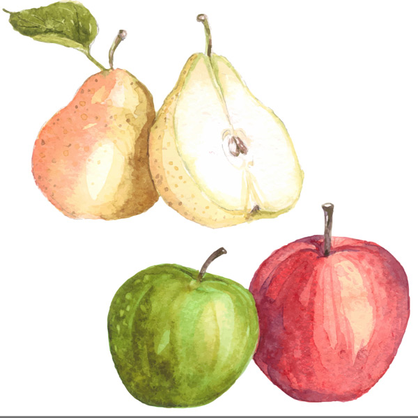 手绘水果,食物,梨子,切开的梨苹果,青苹果,红苹果,水彩画,手绘艺术