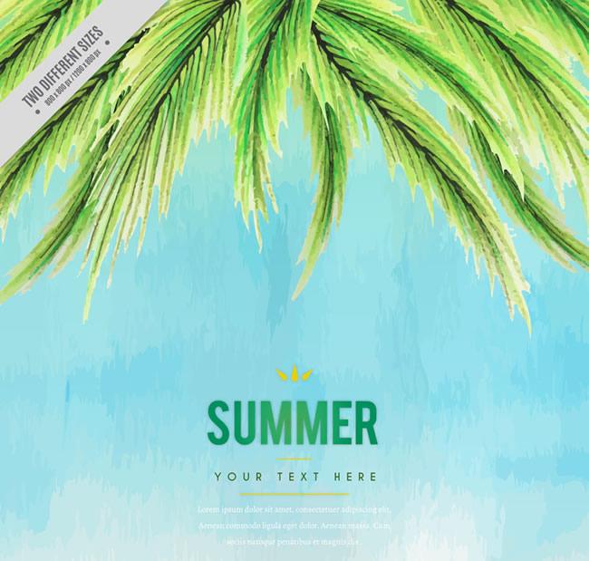 夏季椰子树叶
