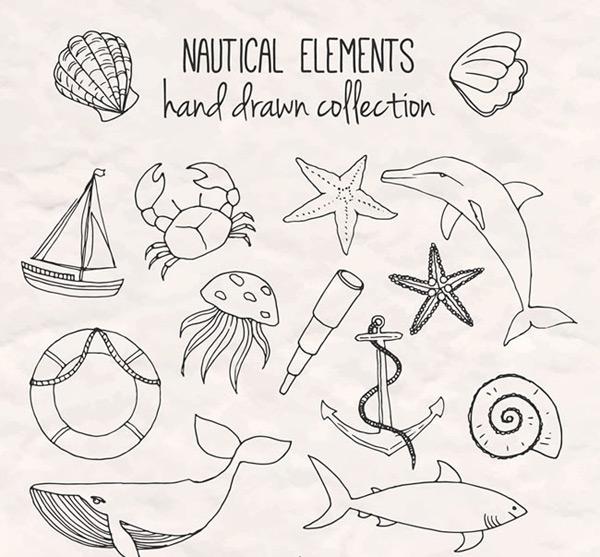 手绘航海元素,贝壳,螃蟹,海豚,海星,水母,望远镜,帆船,船锚,鲨鱼,鲸鱼