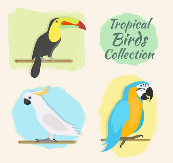 彩色热带鸟类矢量素材,热带鸟类,小葵花凤头鹦鹉,树干,动物,热带,鸟