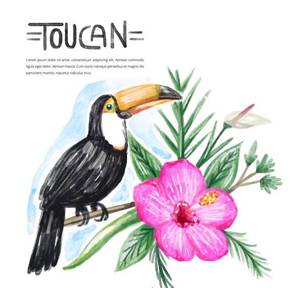 素材分类: 矢量野生动物所需点数: 0 点 关键词: 手绘水彩花卉大嘴鸟
