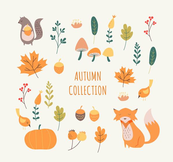 秋季植物和动物