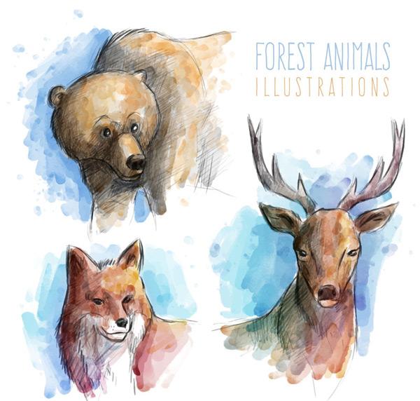 0 点 关键词: 彩绘动物头像矢量素材,熊,鹿,狐狸,彩绘,动物,头像
