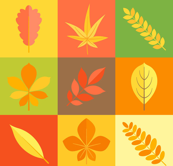 0 点 关键词: 彩色秋季叶子矢量素材,植物,秋季,叶子,树叶,矢量图,ai