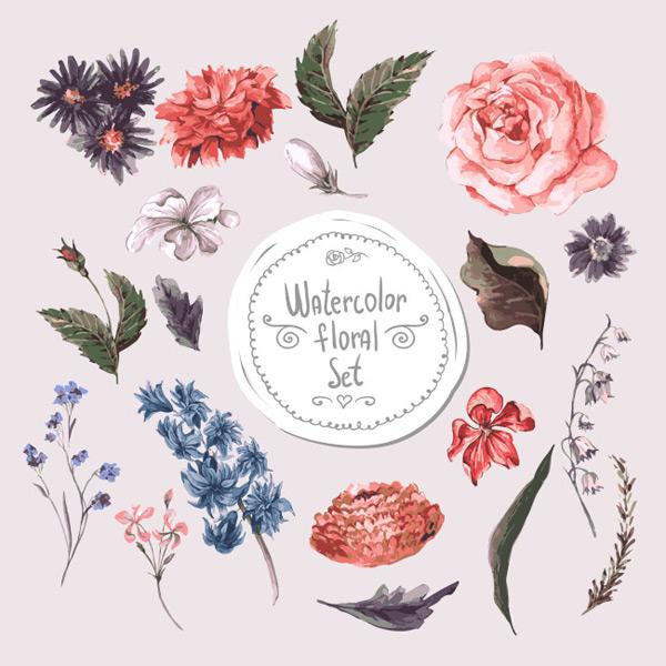 小清新水彩植物插画,花朵,玫瑰,手绘,水彩,小清新,叶子,植物,矢量图