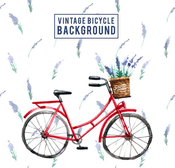 单车和薰衣草
