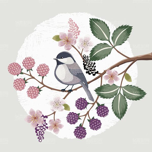 植物,树叶,枝桠,果实,花朵,花环,小鸟,手绘,动物,装饰,插画,自然,唯美