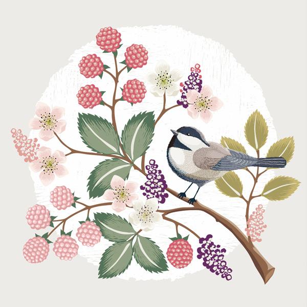 唯美手繪花鳥插畫