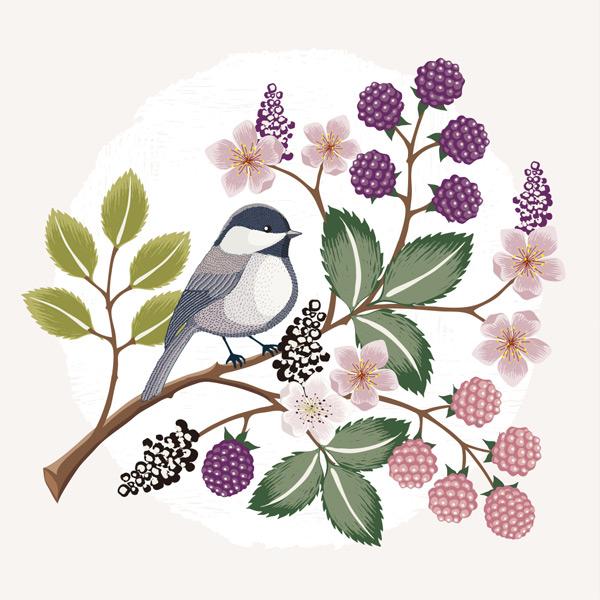 0 点 关键词: 树枝上的花朵果实和小鸟矢量素材,树枝,植物,树叶,枝桠