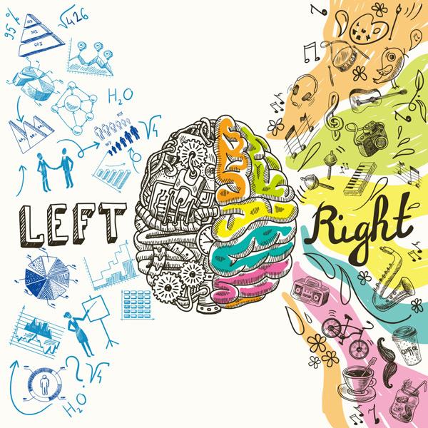 素材分类: 其它所需点数: 0 点 关键词: 彩色大脑分析创意绘画矢量图片