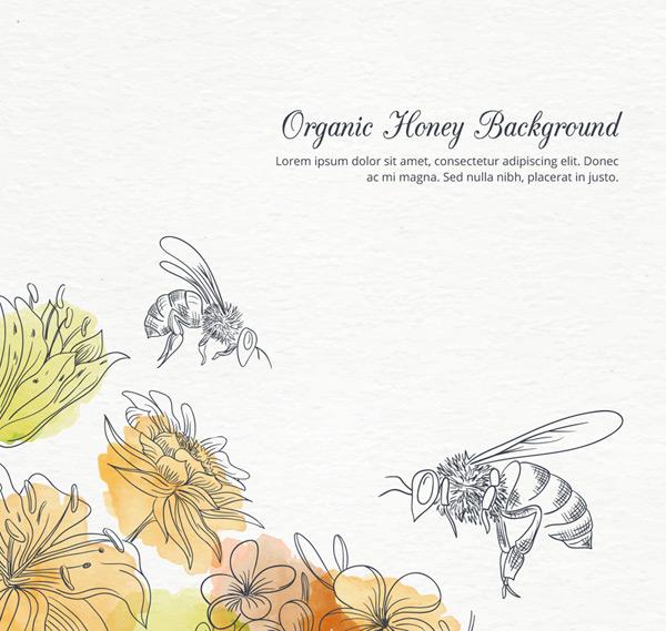花丛中采蜜的蜜蜂图片