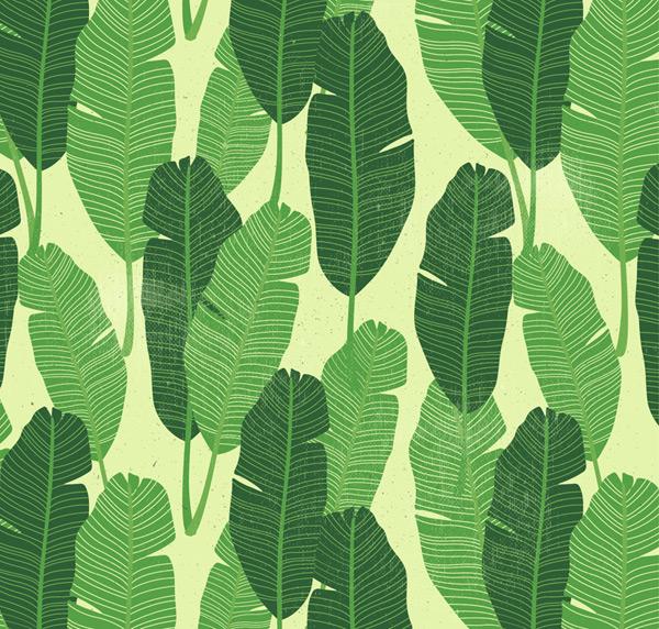 素材分类: 矢量背景所需点数: 0 点 关键词: 绿色羽毛状树叶无缝背景