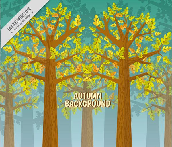 秋季树林风景