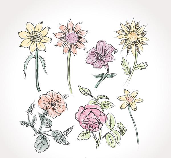 彩绘花朵设计