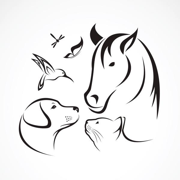 手绘线条动物集合